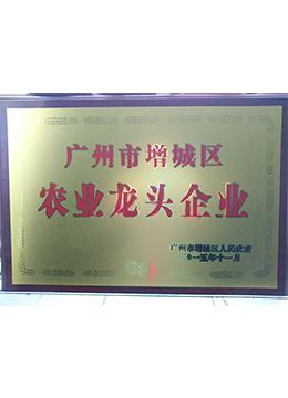龙头企业牌匾