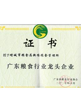 广东粮食行业龙头企业