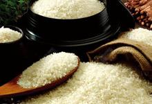 广东增城市粮食局新塘粮食管...平时吃的粳米和大米,这两种有什么区别吗?