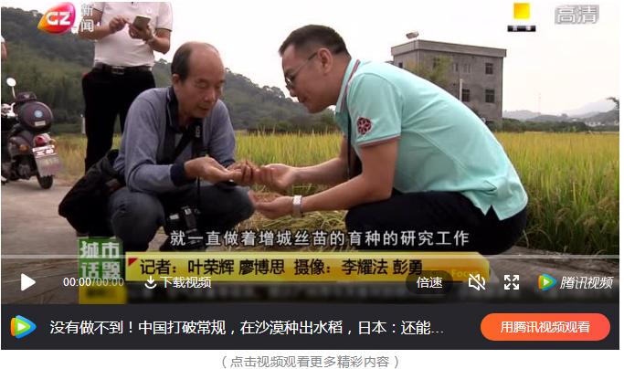 晚稻成熟时 科技助丰收