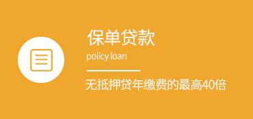 广东保单贷款
