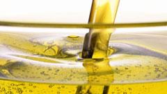 油脂行业解决方案