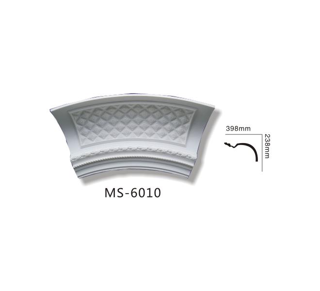 MS6010