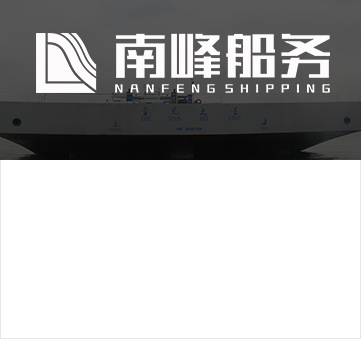 广东龙八国际网站手机版船务有限公司.png