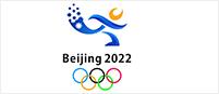 北京冬奥会冰球馆