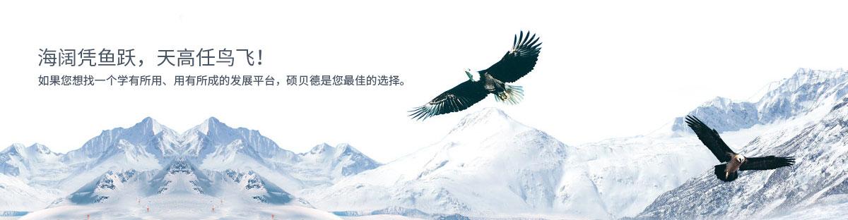 广东生物识别芯片封装技术
