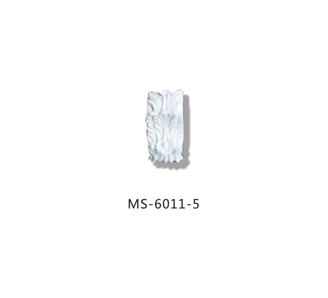 MS6011-5