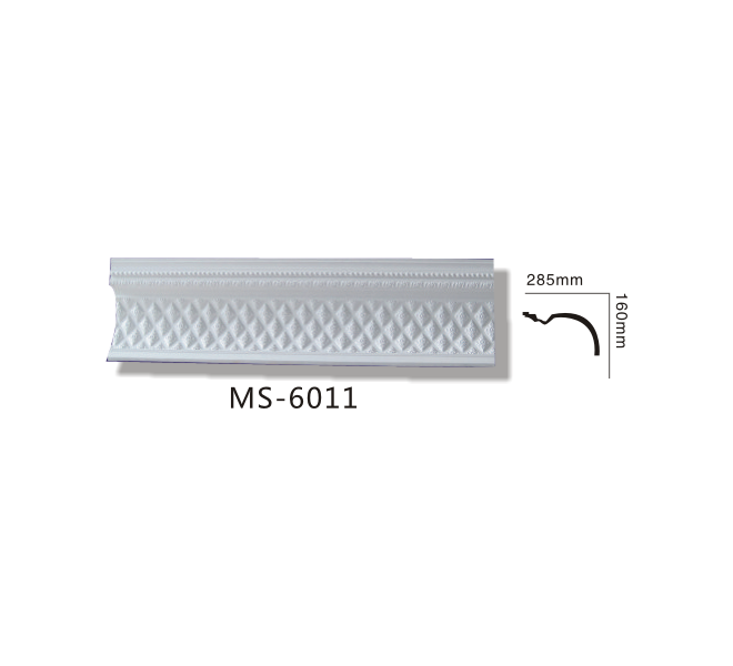 MS6011