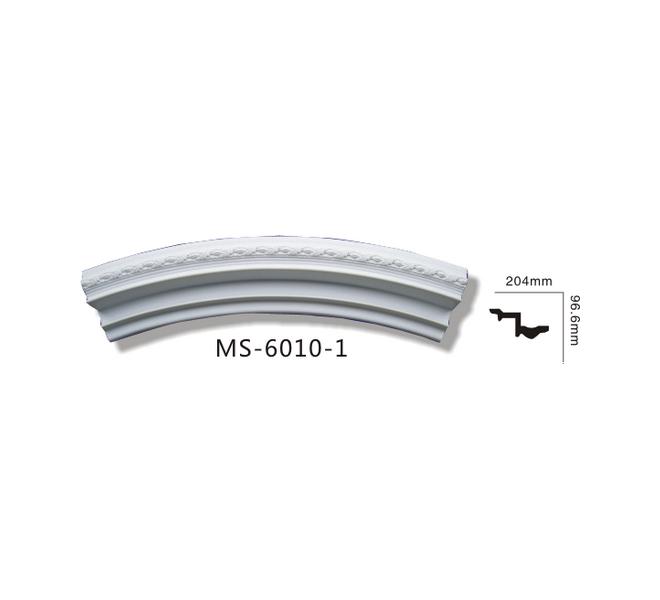 MS6010-1