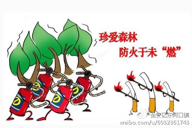 请注意!博罗县发布森林防火禁火令,到2020年2月10日止