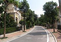 润园小区市政道路