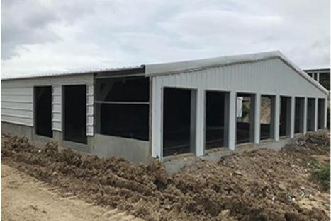 钢结构养殖棚