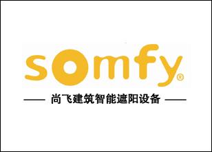 法国尚飞(法国SOMFY)系列产品