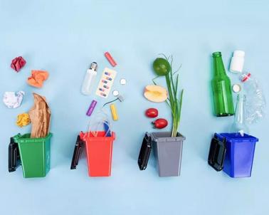 盘点2019 | 哪10件绿色事件,正悄悄改变了我们生活呢?