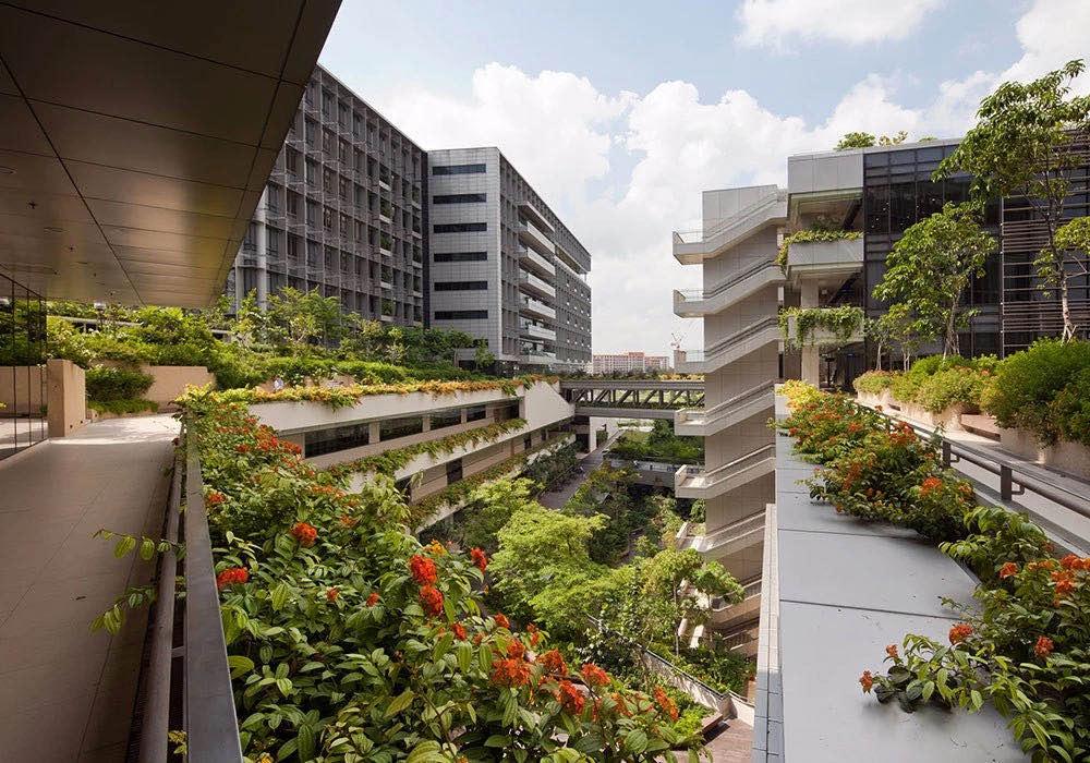 植树节 | 盘点那些全球知名的绿色建筑