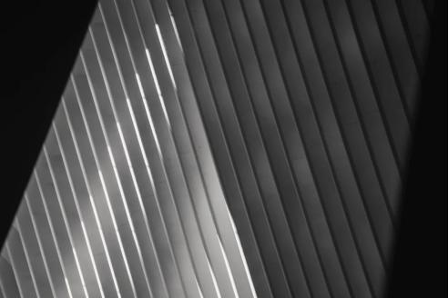 皇磁臻石 | 掌握灰度的艺术