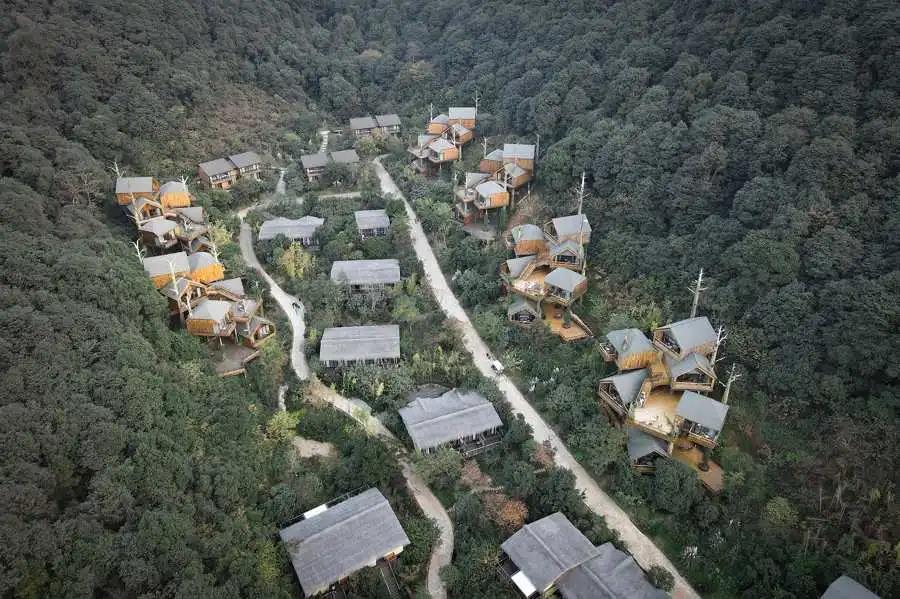 木屋欣赏   杭州开元森泊度假酒店树屋设计