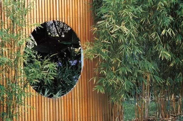 庭院木质景墙,成为你院子里最舒适的一道风景墙!