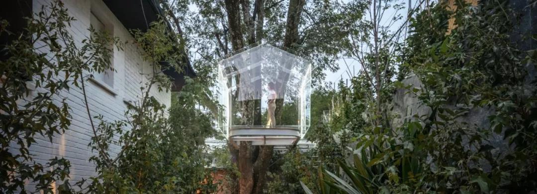 木屋欣赏   梦幻般的玻璃树屋