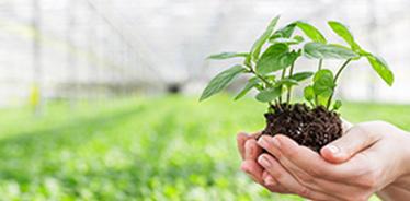 健康土壤才能帶來健康生活