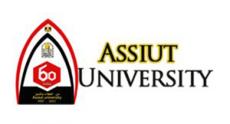 assiut_univ-300x162.png